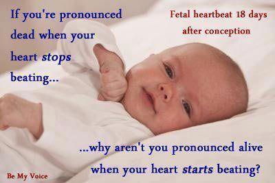 heartbeat-99424076937